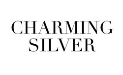 CHARMING SILVER